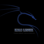 Web Sitelerinin Güvenliği İçin Kali Linux